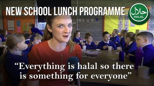 All food served in Ireland's hot school lunch programme is halal