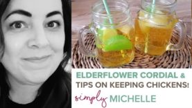 Homegrown Home: Elderflower Cordial, delicious for summer days & my simple tips for keeping chickens