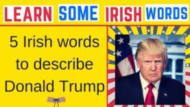 5 Irish Words To Describe President Trump