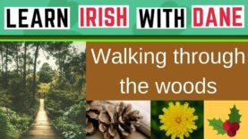 What's The Irish For Woodlands & Lots More