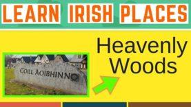 Irish Place Names Explained – Housing Estates