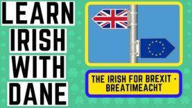 The Irish For Brexit – Irish Language Lessons YouTube