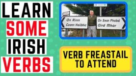 Irish Verbs Made Easy – Freastail – To Attend
