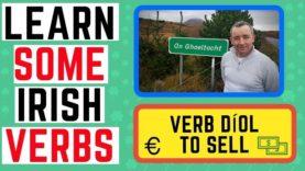 Learn Irish Verbs – Díol To Sell