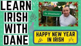 How To Say Happy New Year In Irish