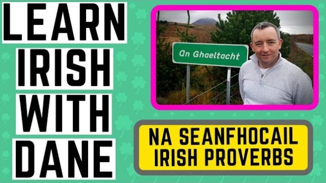 7 Proverbs in Irish Explained