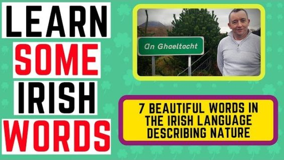 Learn Irish Words – 7 Beautiful Words in the Irish Language