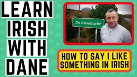 Conversational Irish Language – How to say I like – Is maith liom