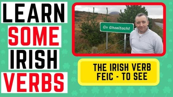 How to talk in Irish – the verb Feic – to see