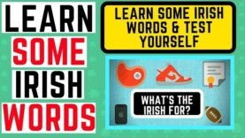 Learn Irish – What's the Irish for these words – test yourself
