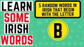 Irish Words Beginning With the Letter B