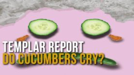 Templar Report: Do Cucumbers Cry?