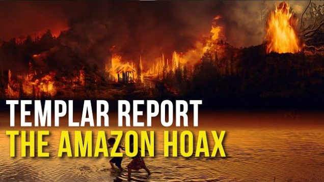 Templar Report: The Amazon Hoax