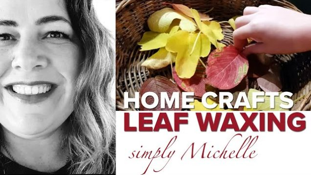 This is PERFECT for the weekend. The easy way to wax leaves and make an autumn mobile for your home.