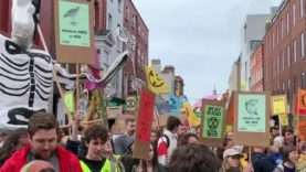 Who are Extinction Rebellion?