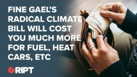 Fine Gael's radical climate bill will see you pay more for fuel,  heat, services, cars
