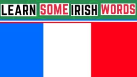 Irish Words That Are Similar To French