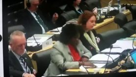 Diversity is at the core of what it means to be Irish AFRICAN  tells United Nations